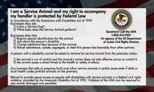 Front of ADA laws card