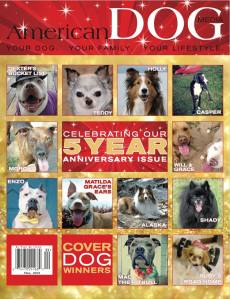 american dog cover
